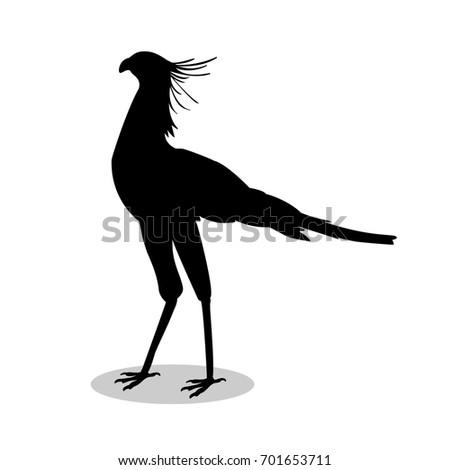 Shutterstock Secretary bird black silhouette animal. Vector Illustrator.