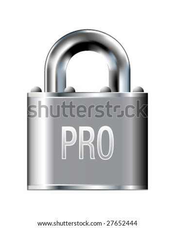 Security professional icon on stainless steel padlock vector button
