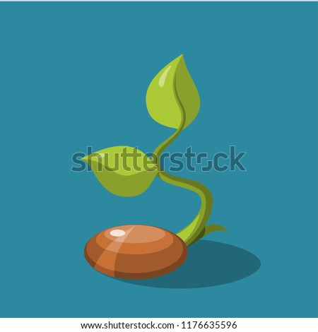 Seed icons vector.