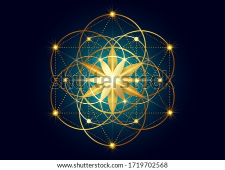 Seed of life symbol Sacred Geometry.  Geometric mystic mandala of alchemy esoteric Flower of Life. Gold luxury design, vector divine meditative amulet isolated on dark blue background ストックフォト ©