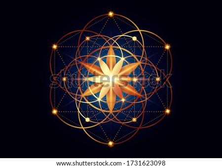 Seed of life symbol Sacred Geometry.  Geometric mystic mandala of alchemy esoteric Flower of Life. Gold luxury design, vector divine meditative amulet isolated on dark blue background