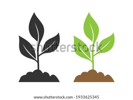 Seedling icon vector illustration isolated on white background. ストックフォト ©