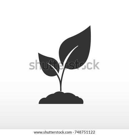 Seedling vector silhouette