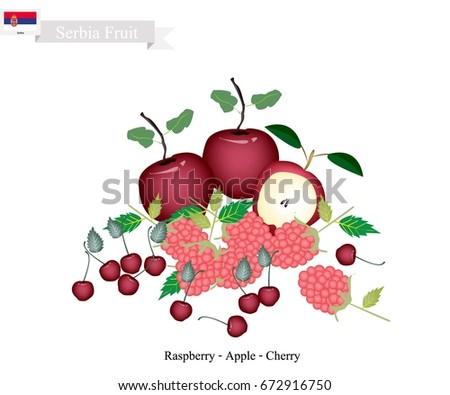serbia fruit  illustration of
