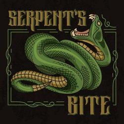 Serpent's bite. Stylish vector illustration of viper snake with designed frame in vintage style.