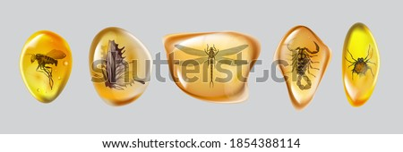 Set amber stone with insects isolated on white background. Collection of ancient and modern insects frozen in amber. Petrous resin for design. Gemstone or mineral bubble.Stock vector illustration Сток-фото ©