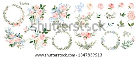 Set. Arrangement of pink roses, decorative leaves . Collection: roses, blue flowers, leaves, twigs,herbs, flower arrangements, wreath. Vector design.