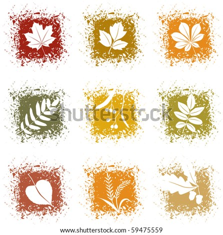 Set autumn leaves icons - stock vector