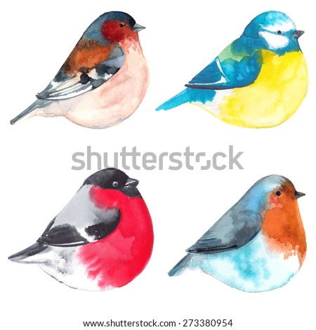 set birds painted on watercolor
