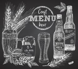Set bottles craft, organic beer, beer can, wheat ear, hopon black chalk board background Vintage hand drawn sketch design. bar, restaurant, cafe menu, flyer, banner, poster engraving style Vector art