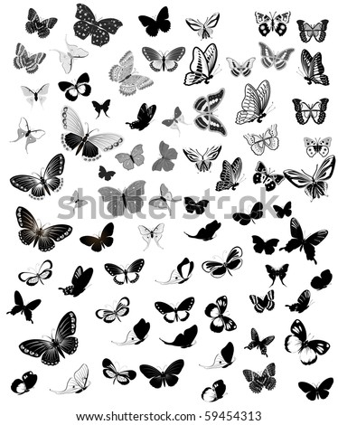 Set Butterfly - stock vector