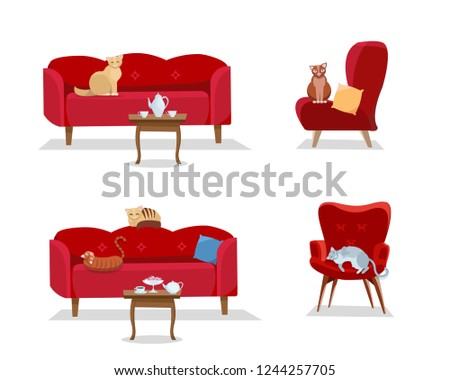 set   5 cats sit on red
