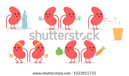 Set, collection of cartoon doodle kidney character, nice and smiling, doing different activities to keep themselves healthy. World kidney day illustrations. Сток-фото ©
