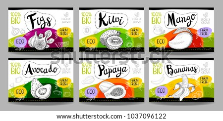 Set colorful food labels, sketch style, food fruits cardboard texture. Figs, kiwi, mango, avocado, papaya, banana. Tropical fruit labels, eco bio food, organic product. Hand drawn vector
