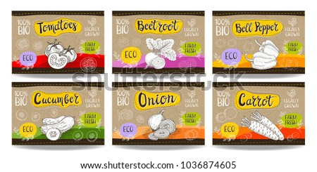 Set colorful food labels, sketch style, food vegetables cardboard texture. Carrot, onions, tomato, bell pepper, beet Vegetables labels, eco bio food, organic product. Hand drawn vector illustration.