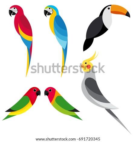 set flat parrot on white