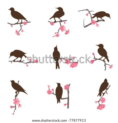 set from birds sitting on a
