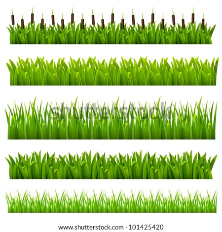 Set from grass of green border.(can be repeated and scaled in any size)