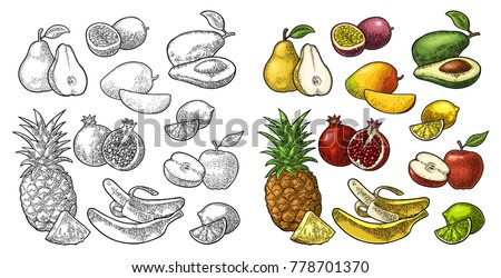 Set fruits. Isolated on the white background. Pineapple, lime, banana, pomegranate, maracuya, mango, avocado. Vector color hand drawn vintage engraving illustration for poster, label and menu