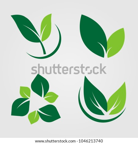 Set green leaves Icon,natural label on white background.Vector illustration