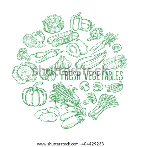 Set hand draw vegetables . Vector vegetables  in the old ink style. Decorative monochrome vegetables   for vegan products, brochures, banner, restaurant menu and  market