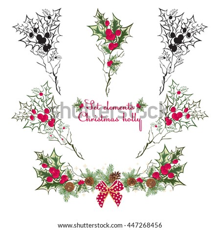 set hand drawing floral holly elementsvector illustration red and