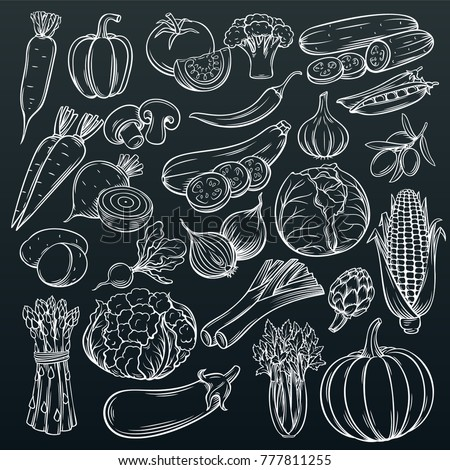 Set hand drawn vegetables icons set. Collection farm product in decorative retro sketch style for restaurant menu, market label. #777811255