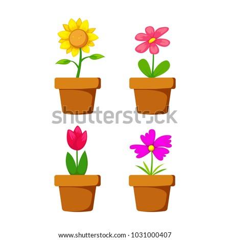 set home flower in pot vector