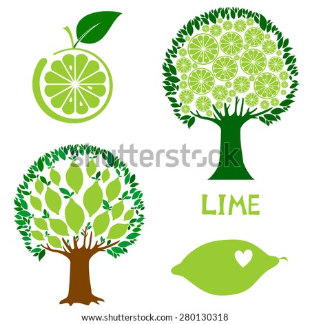 set icon lime fruit isolated on