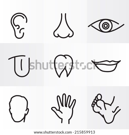 set icons with flat parts of the human body ear nose eyes tongue teeth mouth lips head arm leg foot