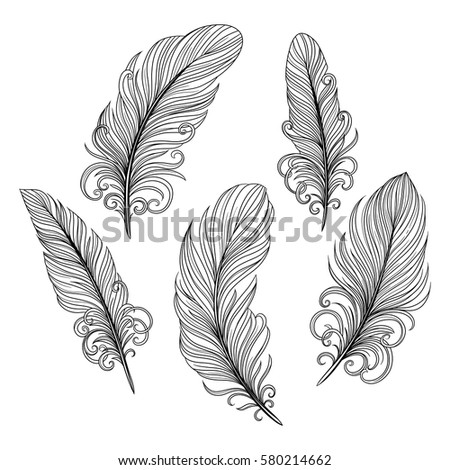 Set illustration with decorative feathers. Isolated objects. Freehand drawing
