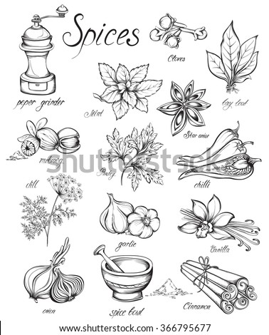 set kitchen herbs and spices