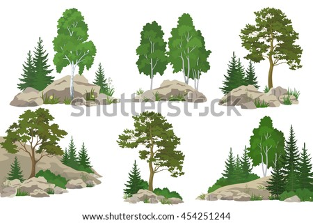set landscapes  coniferous and