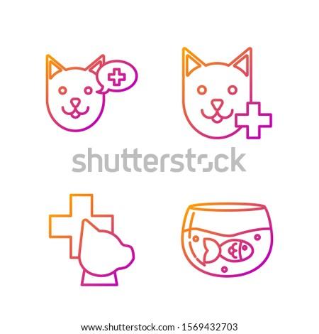Set line Aquarium with fish, Veterinary clinic symbol, Veterinary clinic symbol and Veterinary clinic symbol. Gradient color icons. Vector