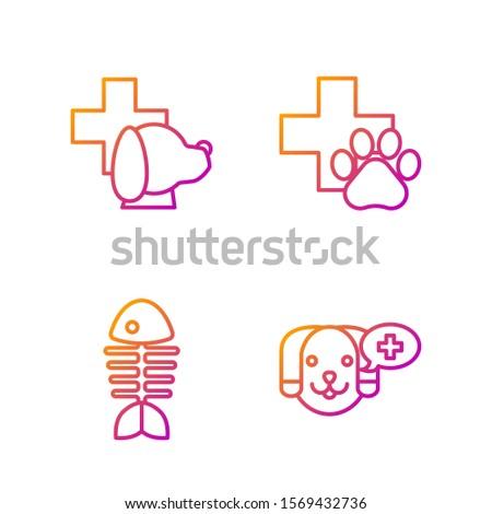 Set line Veterinary clinic symbol, Fish skeleton, Veterinary clinic symbol and Veterinary clinic symbol. Gradient color icons. Vector