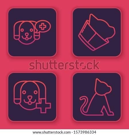 Set line Veterinary clinic symbol, Veterinary clinic symbol, Veterinary clinic symbol and Cat. Blue square button. Vector