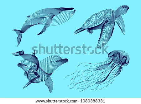 Set marine graphic animals. Vector illustration. The whale,  dolphin, jellyfish, turtle consist of lines.Digital elements design  for business cards, invitations, gift cards, flyers, web.