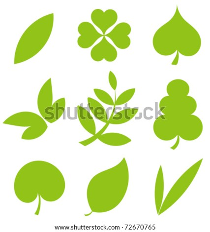 Set od various tree leaves. Vector illustration collection