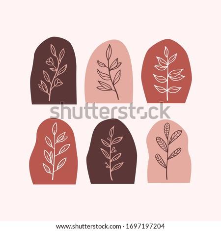 set of abstract botanical