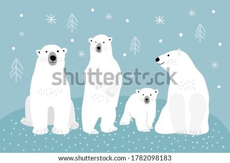 set of adult polar bears and