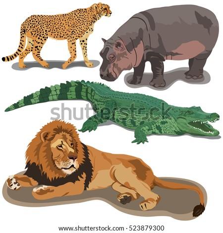 Shutterstock Set of African predators