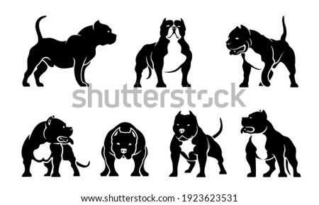 Set of American Bully dog illustrations - isolated vector  Foto stock ©