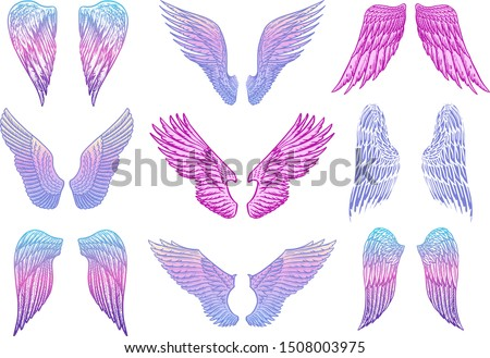 Set of Angel wings in vintage style. Template for tattoo and emblems, t-shirts and logo. Colorful emblem for stickers. Engraved sketch. Vector illustration.