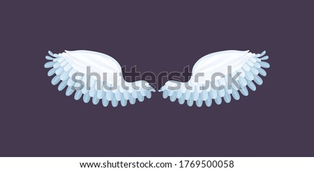 Set of Angle wing graphic.Wings badges. Collection wings badges. stylized bird wings collection. feather wing bird illustration. Set of design elements. Vector illustration.