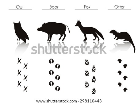 set of animal and bird trails