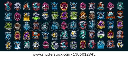 Set of animal emblems. Bear, dinosaur, eagle, leopard, wolf, horse, fox, lion, grizzly, raptor, hawk, jaguar, cat, lynx, leo, stallion, birds. Sports mascots, colorful collection, vector illustration