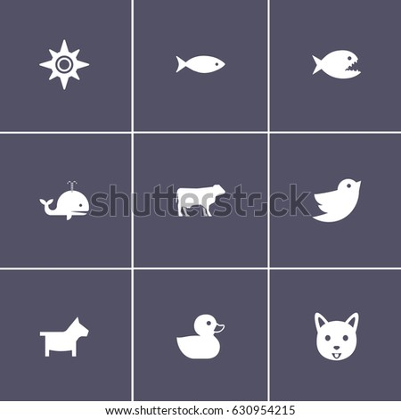set of 9 animal icons