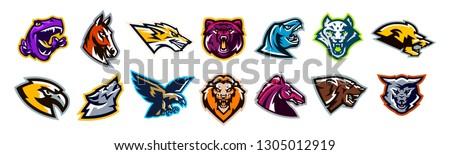 Set of animal logos. Bear, dinosaur, eagle, leopard, wolf, horse, fox, lion, grizzly, raptor, hawk, jaguar, cat, lynx, leo, stallion, birds. Sports mascots, colorful collection, vector illustration Stockfoto ©
