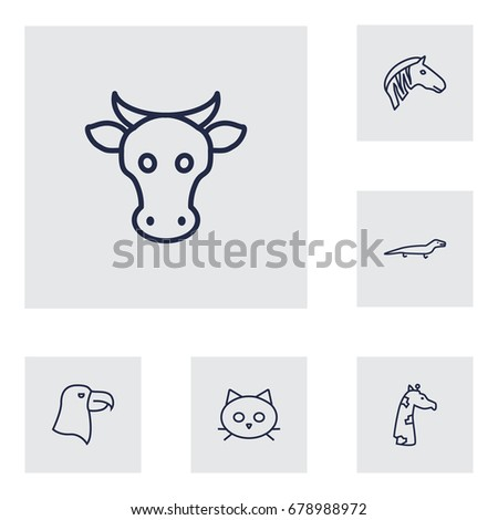 set of 6 animal outline icons