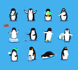 Set of animal penguin design flat illustration